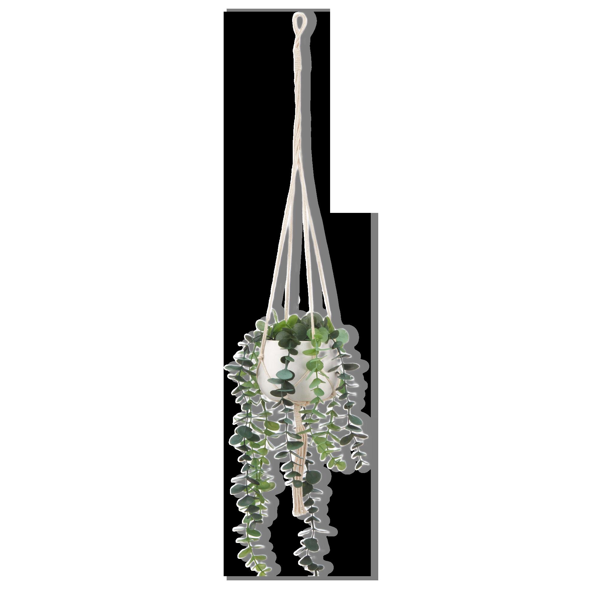 Natural Rope Hanging Planter