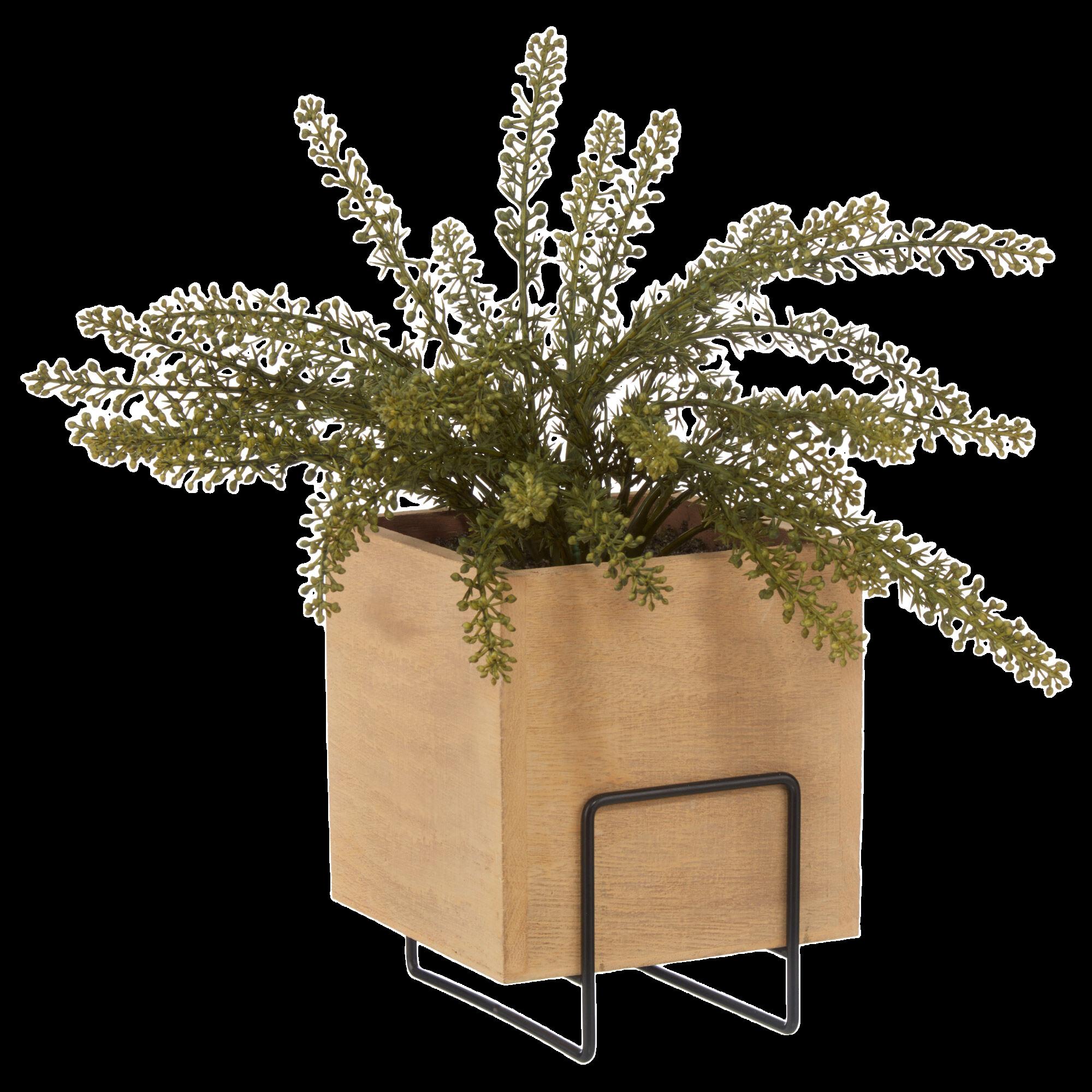 Fougère en pot carré de bois naturel